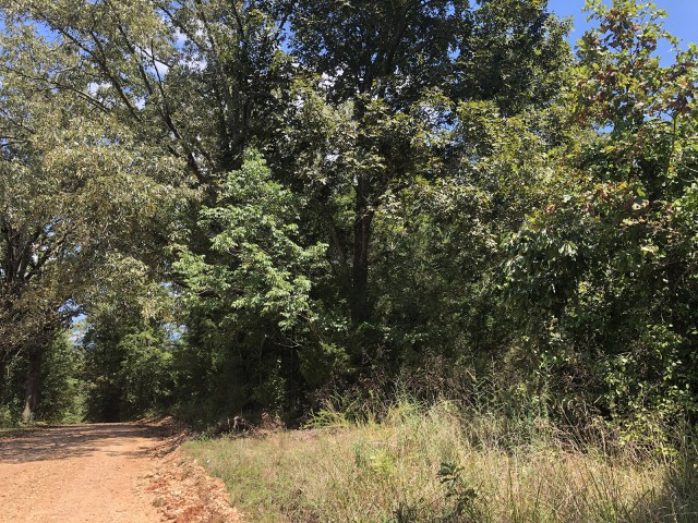 Farm/Ranch/Land for sale –   Tall Timber Road  Hardy, AR